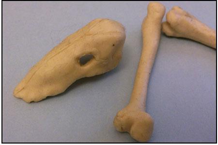 plasticene-bones